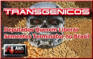 Transgenicos-terminator